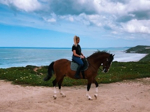 Pretty girl on Lusitano horse on the beach