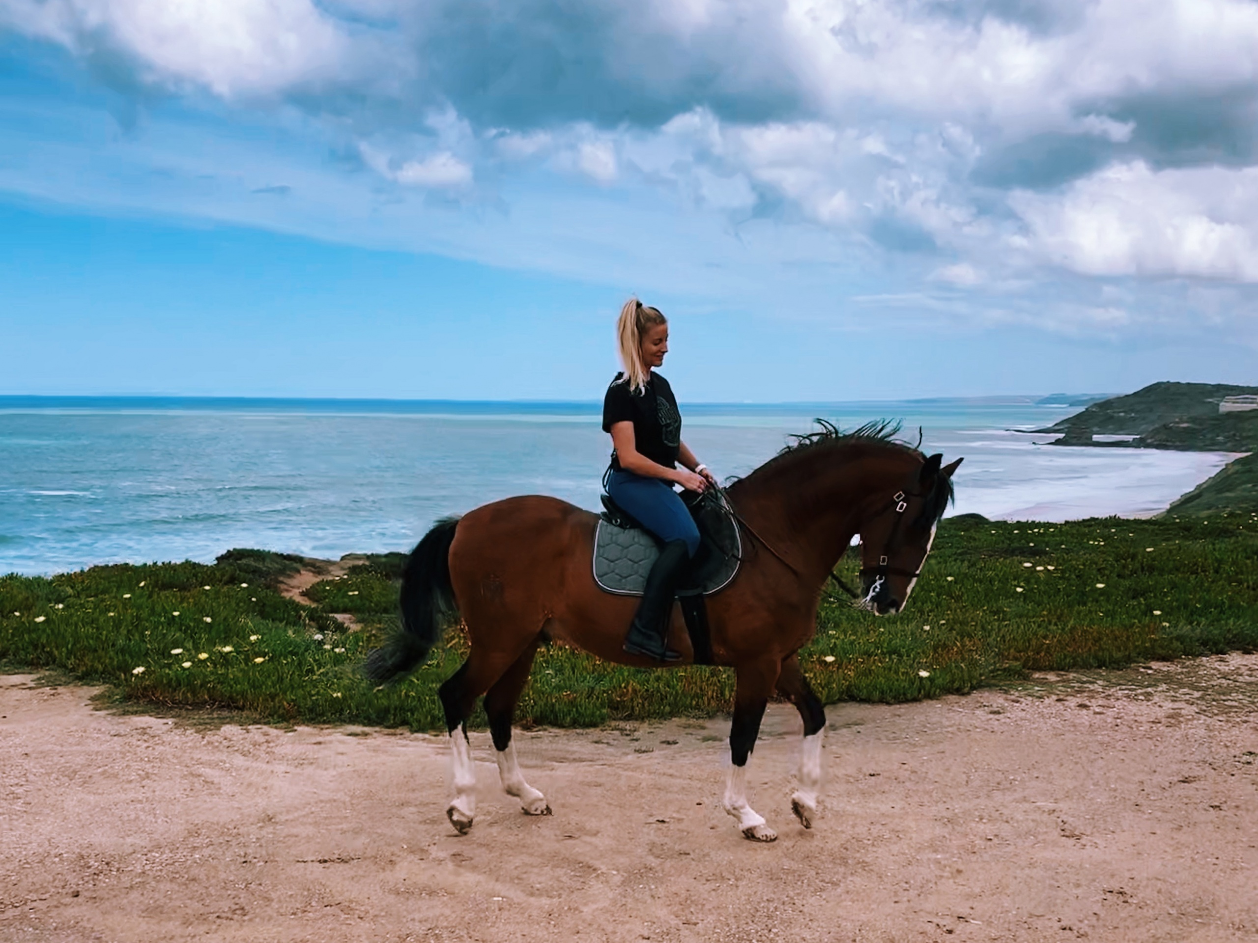 Pretty girl on Lusitano horse on the beach